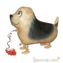 Sétáló Terrier fólia lufi - 50 cm