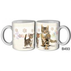 Perzsa macska – Cicás bögre