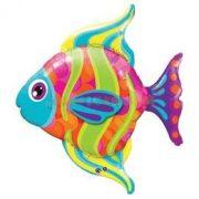 Színes Halacska - Fashionable Fish Super Shape Fólia Lufi
